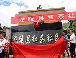 龙陵县加工坊防弹玻璃--红茶社区配套